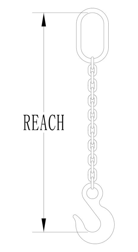 chain sling REACH