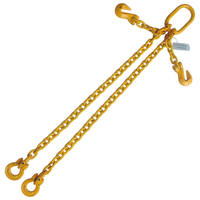 "5/16"" x 4' G80 Adjustable Chain Sling with Omega Link Double Leg"