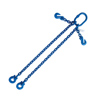 "5/16""x4' G100 Adjustable Chain Sling with Omega Link Double Leg"