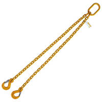 "3/8"" x 8' G80 Chain Lifting Sling with Sling Hook Double Leg"