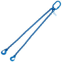 "3/8"" x 4' G100 Chain Sling with Sling Hook Double Leg"