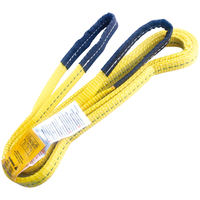 "1"" x 6' Polyester Lifting Sling Tow Strap Eye & Eye 2 Ply"