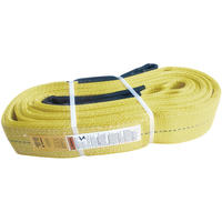 "4"" X 12' Polyester Lifting Sling Eye & Eye 3 Ply Super Duty"