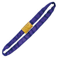 Endless Round Lifting Sling Heavy Duty Polyester Purple 8'